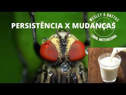 PERSISTNCIA X MUDANAS #MOTIVAO #MOTIVACAO