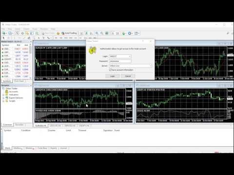 MT4 Tutorials - Orbex Forex Trading Blog