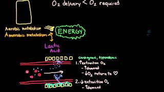 Shock: Oxygen Delivery and Metabolism