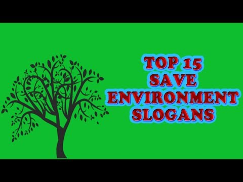 Download How To Write Environment Day Slogan Video 3GP Mp4 FLV HD