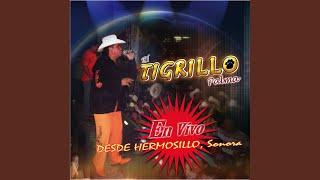 El 24 (En Vivo Desde Hermosillo Sonora/2007)