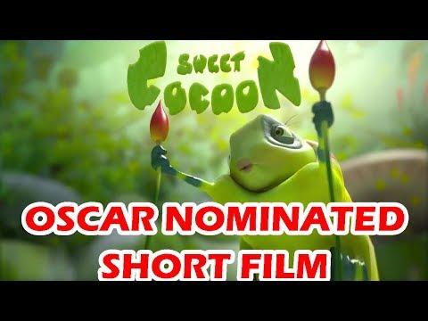 Sweet Cocoon Oscar Nominated 3D Short Film 2015 | A CGBros Film by ESMA