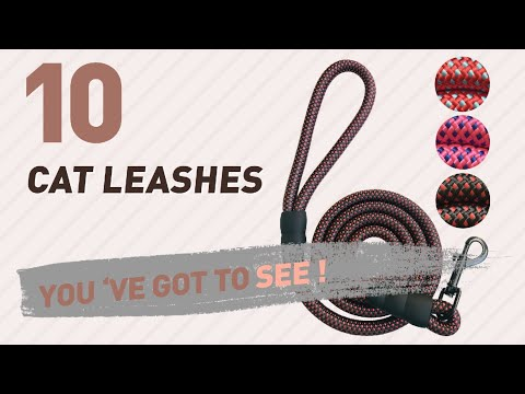Top 10 Cat Leashes // Pets Lover Channel Presents: