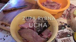 Zupa rybna - Ucha