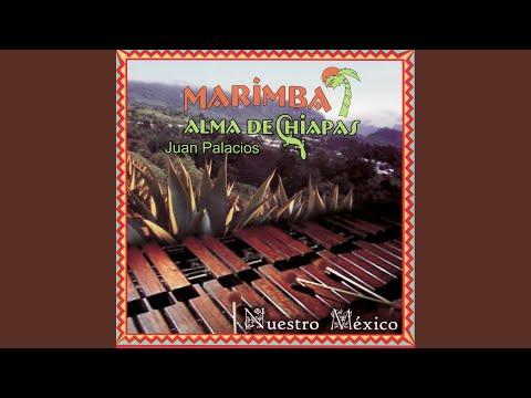 Mosaico Oaxaqueño-La Sandunga-Dios Nuenca Muere-La Llorona-El Feo-La Tortuga Del Arenal