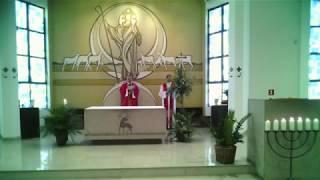 [Santa Missa de Domingo de Ramos – 05/04/2020 – presidida pelo bispo Dom Sergio]