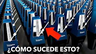 El Secreto de la Sincronización | Veritasium en español
