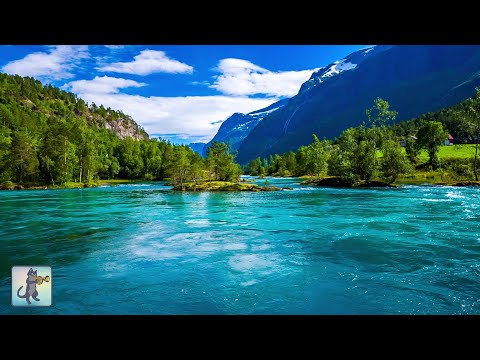 VIDEO: AMAZING NATURE SCENERY on Planet Earth