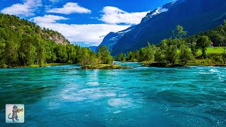 3 Hours of Amazing Nature Scenery & Relaxing Music for Stress Relief.
