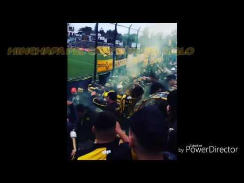 """""""Peñarol vs Racing 2017 Hinchada de Peñarol"""" Barra: Barra Amsterdam • Club: Peñarol"""