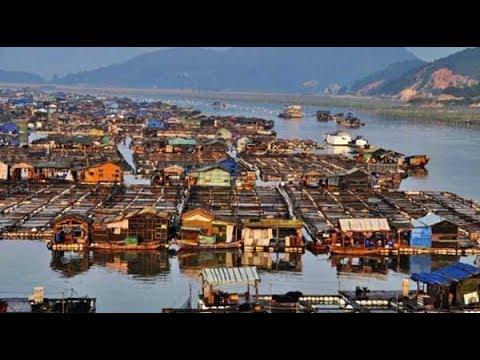 China Floating Fishing Village समुद्र पर बसा चीन का एक गांव, जहां तैरते हैं घर Travel Nfx