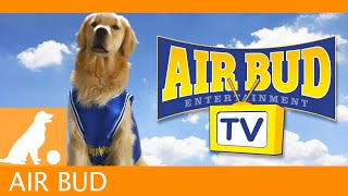 Airbud TV!