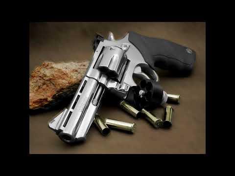 Na mira de Bolsonaro, lei afrouxa, e 6 armas são vendidas por hora a civis