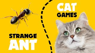 STRANGE ANT on screen for cats ★ CAT GAMES