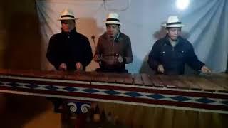 Marimba de chejoj, sansebastian h, 2,020
