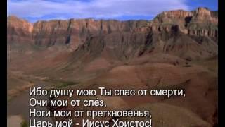 Павел Плахотин - Душу мою Ты спас