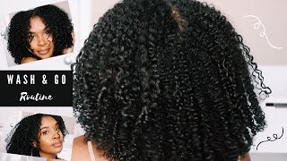 WASH AND GO ROUTINE on 3C/4A hair | DEFINED CURLS | LOW POROSITY FRIENDLY