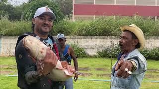 PESCARIA NA CHÁCARA (PARTE 1) | COMÉDIA SELVAGEM