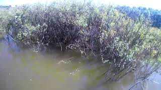 Арбалет для рыбалки с берега