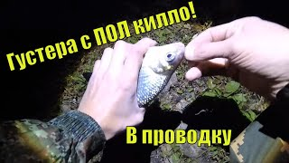 Рыбалка на удочку ночью.Да вообще не КЛЕВАЛО!