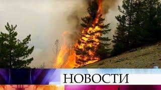 Авиалесоохране РФ удалось справиться с самым сложным пожаром этого лета - в Якутии.