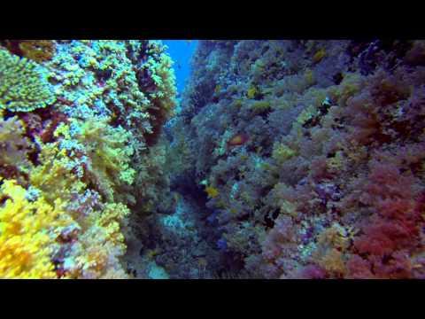 Entdecke das Nord Male Atoll, Nord Male Atoll,Malediven