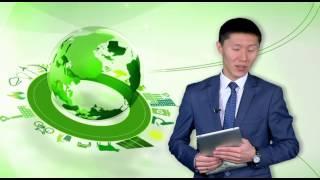 Зеленая экономика. Строительство международного комплекса