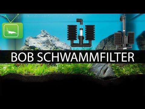 BOB SCHWAMMFILTER VS. LUFTHEBEFILTER | Filter | GarnelenTv