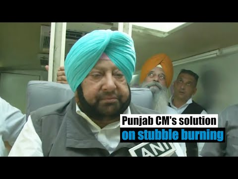 Punjab CM's solution on stubble burning as Delhi enters 'poor' air quality category