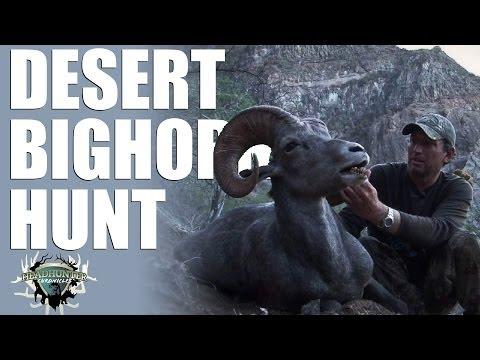 Headhunter Chronicles – Desert bighorn sheep in Mexico