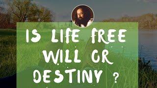 Is Life Free Will or Destiny? - Sri Sri Ravi Shankar