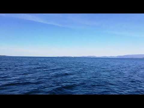 Singeltreff nordfjordeid