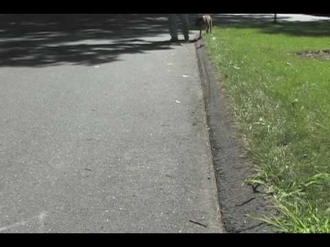 Curb Walking - Video