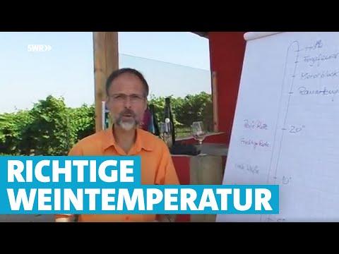 Werner erklärt Wein: Die richtige Temperatur