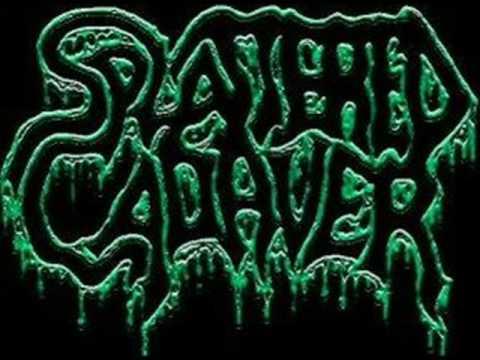 Splattered Cadaver - Merciless Butchery (brutal Death) online metal music video by SPLATTERED CADAVER
