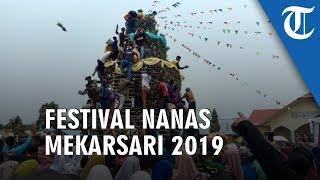 Kemeriahan Festival Nanas Mekarsari 2019, Warga Sampai Berebut