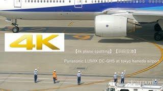 【4K Plane Spotting】[羽田空港] Panasonic LUMIX DC-GH5 At Tokyo Haneda Airport [HND/RJTT]