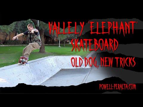 'Old Dog, New Tricks' - Vallely Elephant