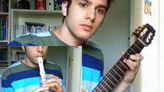 Thème de la Plaine d'Hyrule (guitare et flûte)