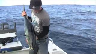 preview picture of video 'Southern BlueFin Tuna, Portland Victoria'
