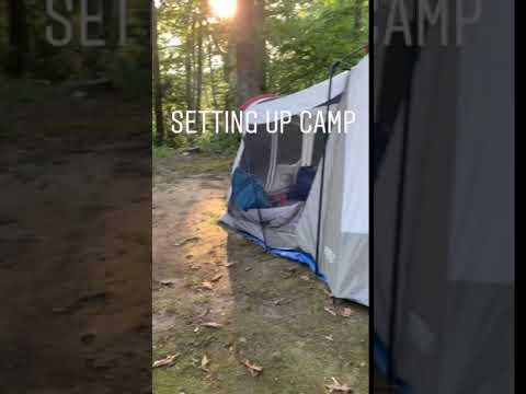 Plenty of Room in the campsite!