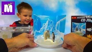 Эксперименты со льдом распаковка делаем айсберги Experiments with ice unpacking set do icebergs