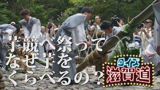 芋競べ祭ってなぜ芋をくらべるの?:クイズ滋賀道