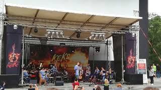 The Tap Tap - Řiditel autobusu (live)