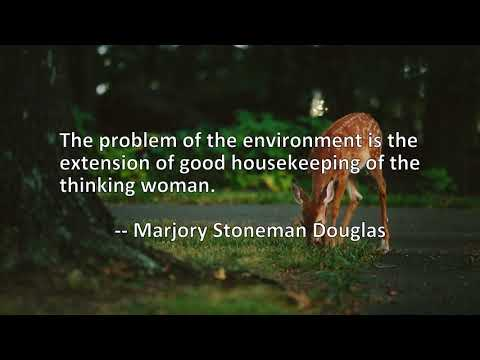 mp4 Housekeeping Quote Of The Day, download Housekeeping Quote Of The Day video klip Housekeeping Quote Of The Day