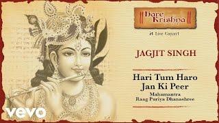 Hari Tum Haro Jan Ki Peer - Live Concert | Jagjit Singh