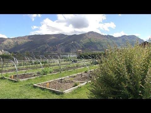 Down on the (suburban) farm: Randolf & Martys Super-productive home garden