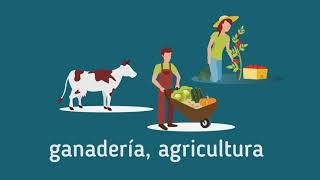 Nuevo plazo - Convocatoria a proyectos de producción familiar agropecuaria y pesquera