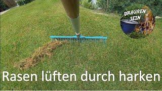 Rasen lüften durch harken. Rasenfilz entfernen, Halme aufrichten... Rasenpflege