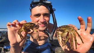 Как можно ловить крабов на море в дубай